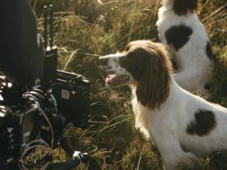 Skinners Camera BTS-37